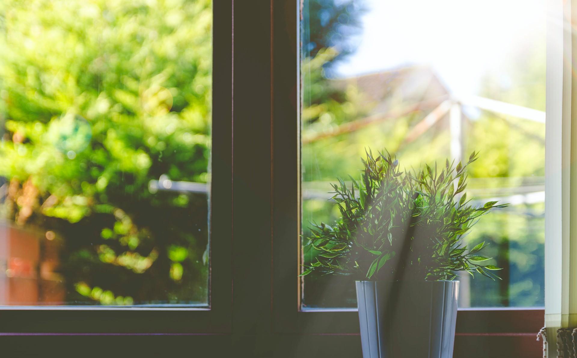 fina fönster med vår fönsterputs i Ludvika